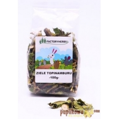 FactoryHerbs - ZIELE TOPINAMBURU - 100g